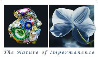 The Nature of Impermanence-smaller