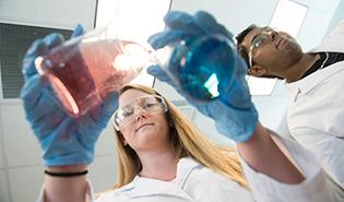 PBSC Biotechnology Lab